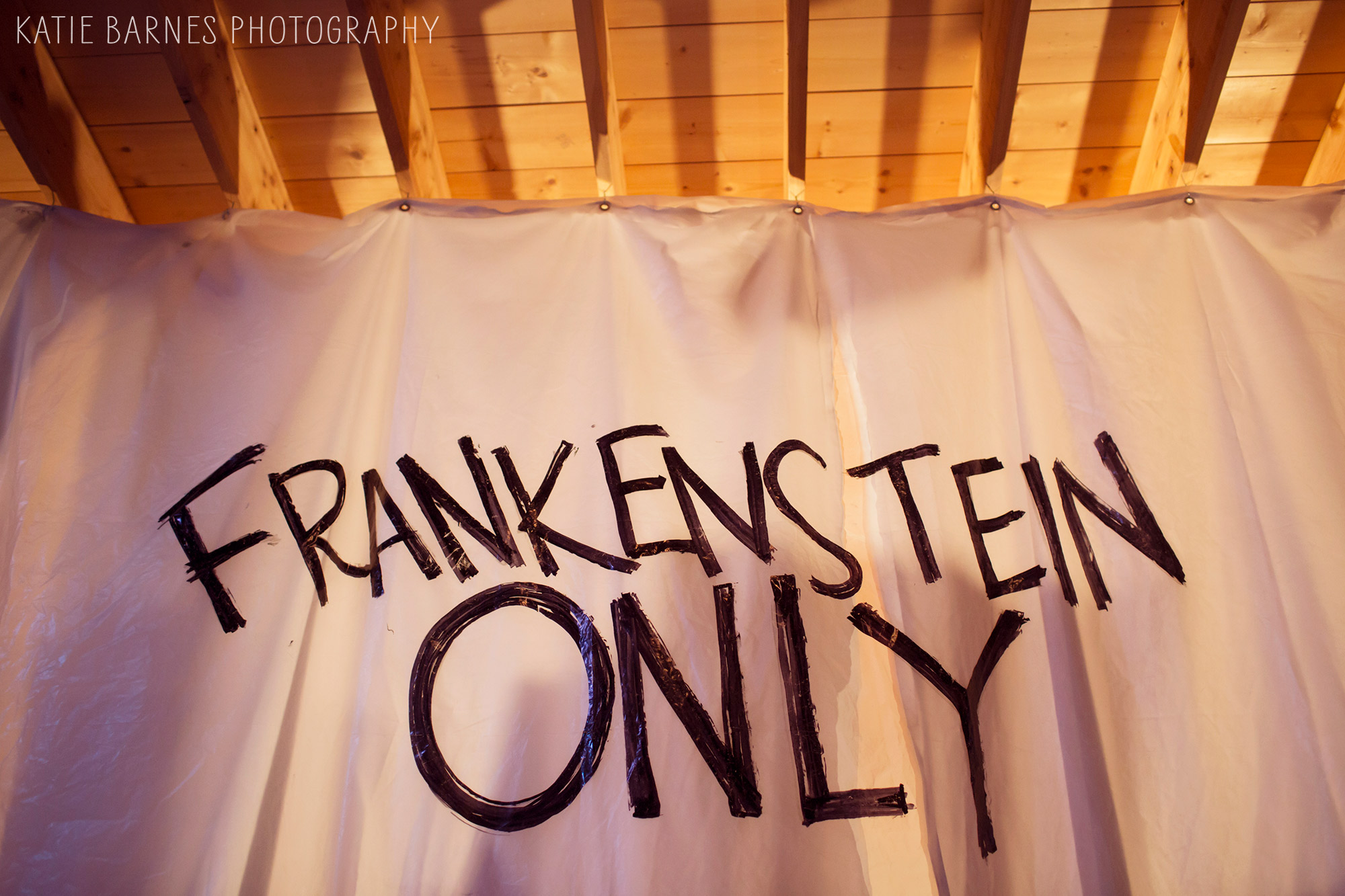 This Columbia, MO theatre photography for GreenHouse Theatre Project's Frankenstein.