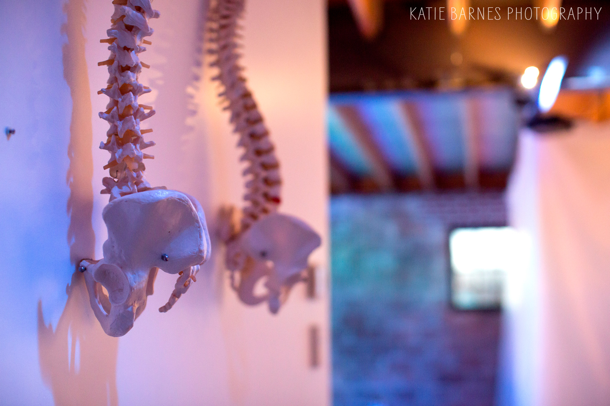 Skeletons hang from the wall at GTP's Frankenstein.